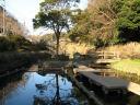 沼の池遊水池